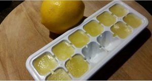 congelado-limao