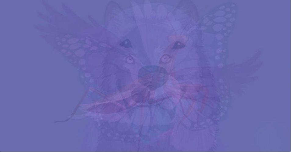 O animal que você vê primeiro nesta imagem revela a essência de sua alma:
