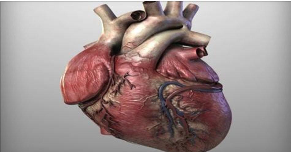 Com 3 colheres deste remédio caseiro, você desentupirá suas artérias e dirá adeus a colesterol e triglicerídeos altos!