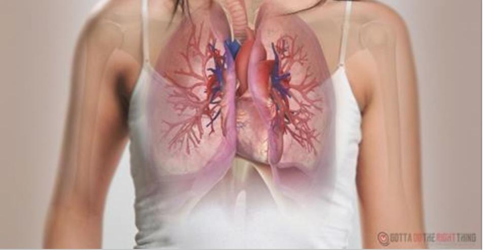 Um mês antes de um ataque cardíaco, seu corpo vai avisar você com estes 9 sinais!