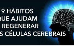 Se fizer estas 9 coisas, você pode produzir novas células cerebrais e ter mais clareza mental!