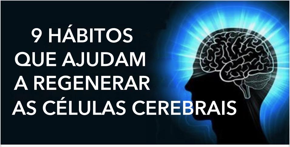 celulas_cerebrais_-_habitos