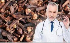 Mastigar alguns cravos-da-índia proporciona todos estes benefícios – até seu médico vai recomendar