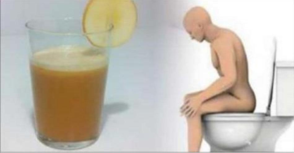 intestino_-_emagrecer