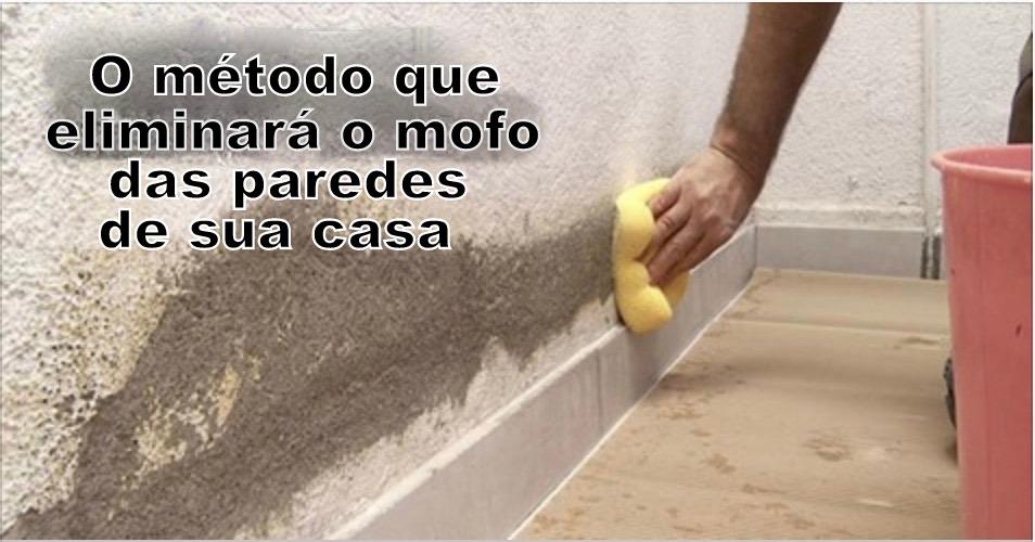 paredes_-_mofo