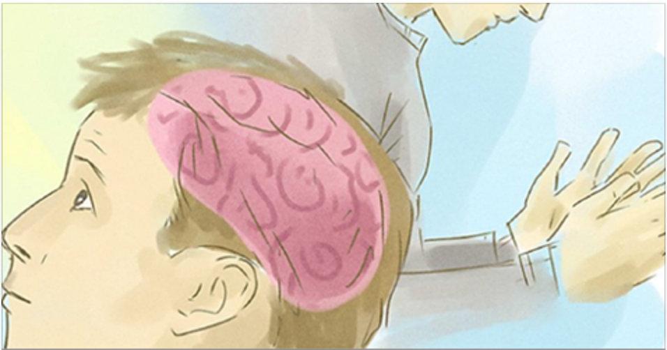 cerebro_-_habitos_-_novo