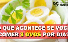 O que acontece se você comer 3 ovos todos os dias?