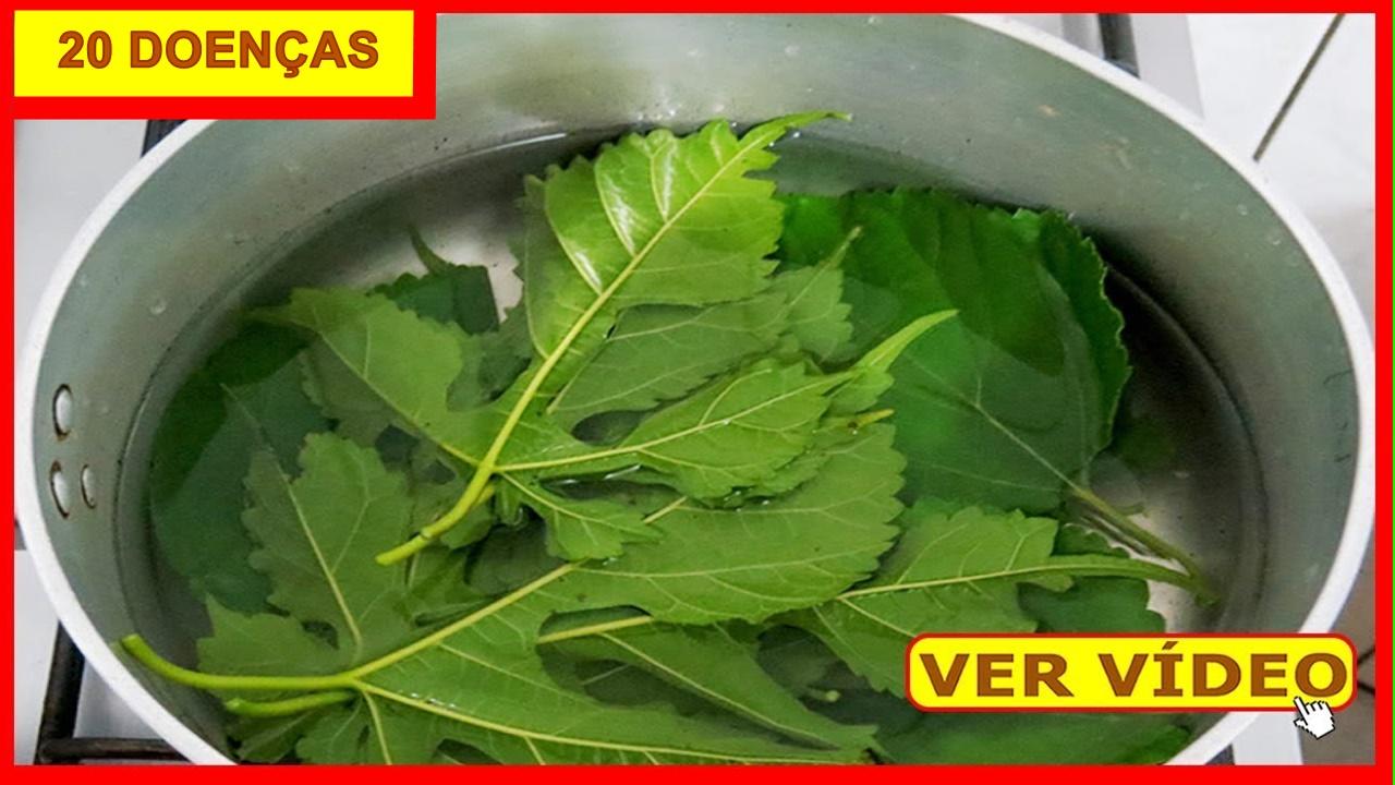 FOLHAS-DE-AMORA-OK-1280-720