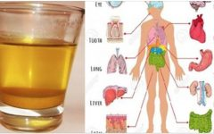 Beba 1 copo de água de cúrcuma todos os dias em jejum e estas coisas vão acontecer no seu corpo