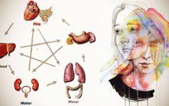 Como as emoções acumuladas fazem com que as células cancerosas cresçam dentro do seu corpo