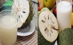 Graviola! Conheça os incríveis benefícios dessa fruta e suas utilidades!
