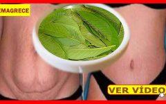 Aprenda a fazer chá de graviola para emagrecer até 2 Quilos Por Semana!