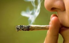 ESTUDO CONFIRMA: FUMAR MACONHA PODE PREJUDICAR CÉREBRO E DESTRUIR A MEMÓRIA