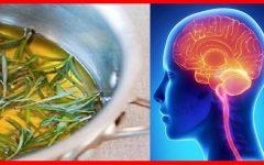 Anda esquecido? 7 Remédios naturais para memória