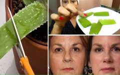 Babosa no rosto: benefícios e como aplicar para melhorar a saúde da pele