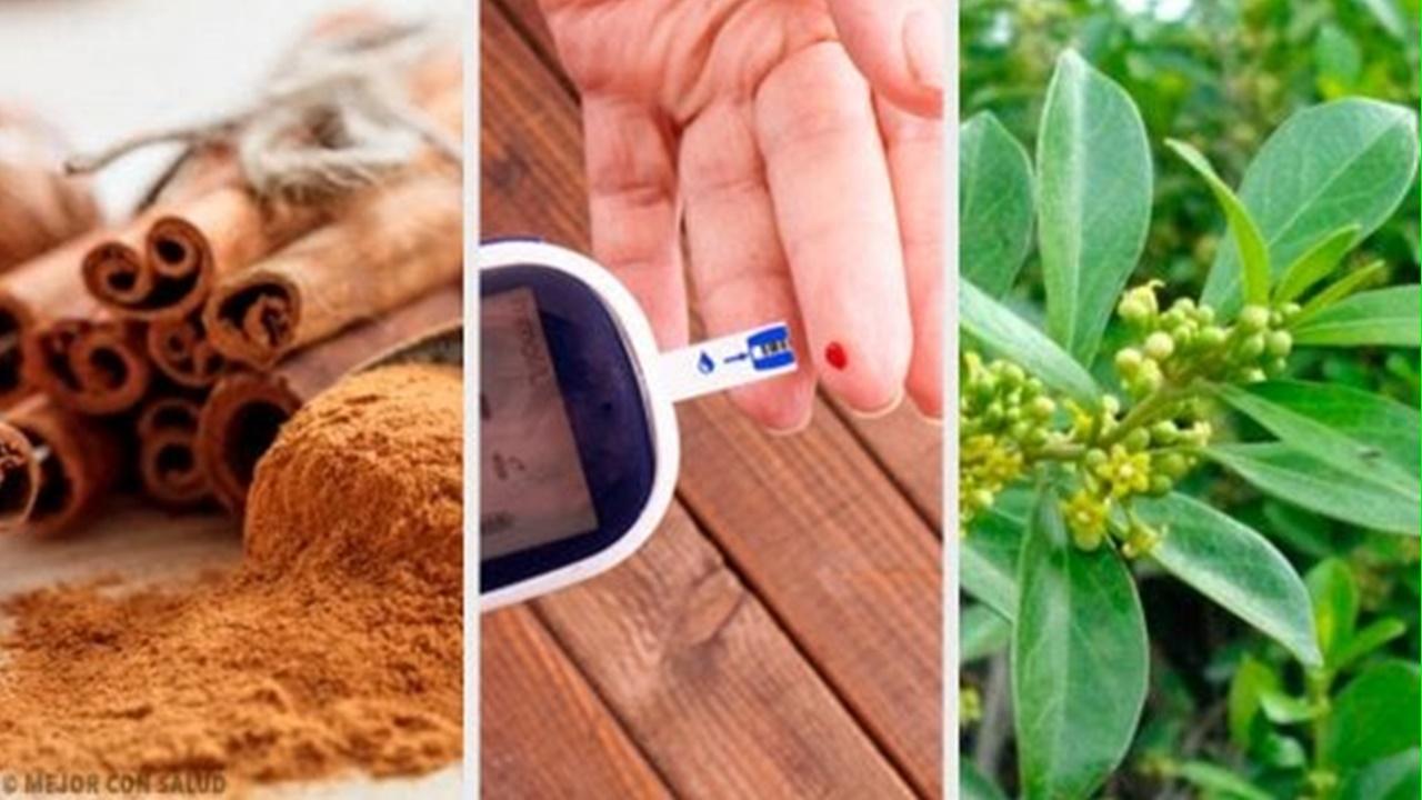 diabetes-plantas