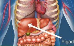 Como restaurar o fígado de forma natural para deixá-lo com saúde outra vez!