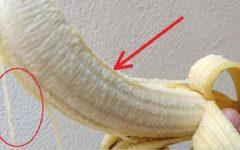 Os segredos dos fios brancos que existem na banana – eles têm uma importante função e podem ser úteis a você!