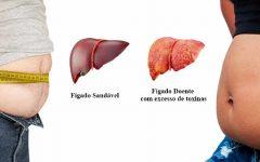 Saiba que um Fígado doente envia sinais ao corpo. Perceba aqui quais são!
