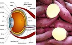 Como a batata-doce pode prevenir diabetes, cegueira e ainda ajudar a perder peso