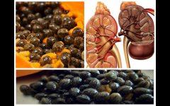 Sementes de mamão: benefícios e como consumir