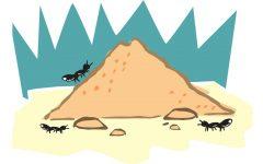 Livre-se das formigas com estas 11 soluções caseiras