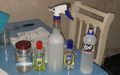 Aprenda receitas para evitar barata, formiga e mosquito em casa