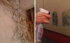 Como tirar cheiro de mofo? 5 Passos para se livrar do problema