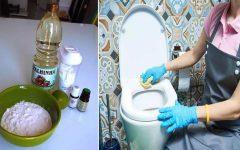 Seu banheiro sempre limpo e cheiroso com esta pasta para limpeza