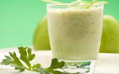 Mastruz com leite: conheça os inúmeros benefícios para a saúde