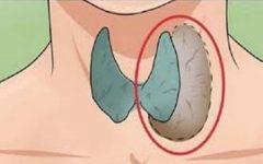 7 sinais que seu corpo dá para lhe dizer que a tireoide não está funcionando bem!