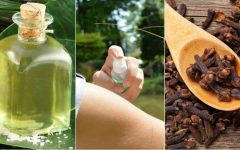 Faça você mesma: 5 receitas poderosas de repelentes naturais