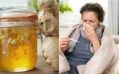 Xarope de mel e gengibre: combate gripe, resfriado e fortalece o sistema imunológico