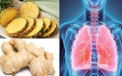 Lambedor de abacaxi e ervas: remédio caseiro seguro para tratar gripe e tosse