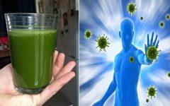 Suco para aumentar a imunidade: fortalece o organismo e as defesas do corpo