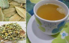Chá de louro com camomila: melhora o sono, evita gripe e fortalece o sistema imunológico