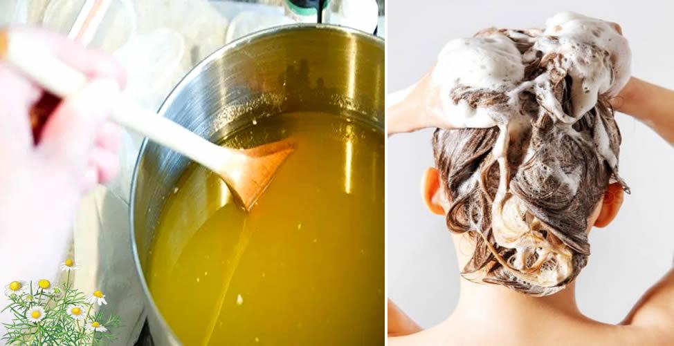 Como-Fazer-Shampoo-de-Camomila