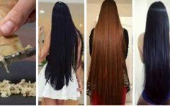 O gengibre combate a queda e acelera o crescimento dos cabelos: mas, você precisa usá-lo desta maneira