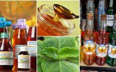Garrafada de babosa, mel e vinho branco: fortalece imunidade e protege contra doenças