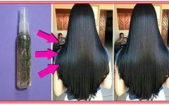 Conheça a receita caseira que faz crescer o cabelo crescer como nunca