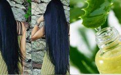 Xampu caseiro para o cabelo crescer urgente: 3 receitas para estimular o crescimento dos fios