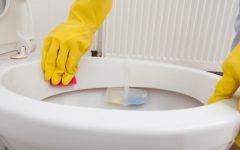 Como deixar seu vaso sanitário brilhando e acabar com o Cheiro de Xixi No Sofá, Colchão e Banheiro