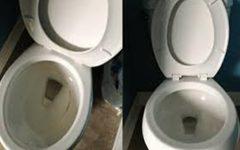 Truques para limpar o banheiro