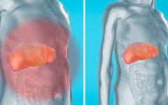 Como eliminar as toxinas dos rins, fígado e bexiga de forma natural