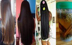 Receitas caseiras que vão deixar seu cabelo gigante e Combater a Queda de Cabelo