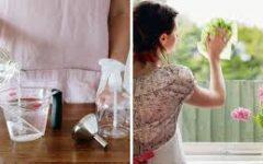 Como limpar vidros com vinagre e deixá-los brilhando