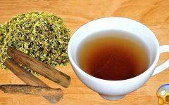 Chá de canela e orégano: anti-inflamatório, antioxidante e fortalece o sistema imunológico