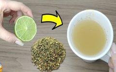 Chá de limão e orégano: desinflama a garganta, reduz a febre e a tosse