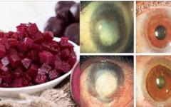 Os 10 melhores alimentos para melhorar a visão e evitar doenças como catarata, glaucoma e degeneração macular!