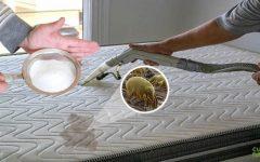 Como limpar colchão e travesseiro para ficar livre dos ácaros, dormir bem e cuidar da saúde